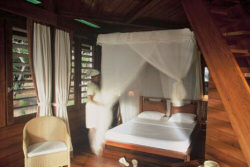 One of the comfortable rooms at the Anjajavy Hotel - Madagascar