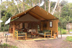 The Ishasha Wilderness Camp