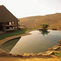 Stunning view from the pool of Borana Lodge and Cottages
