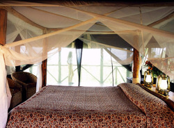 Luxarious room at Campi ya Kanzi
