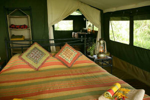 Your bedroom at the Elephant Pepper Camp